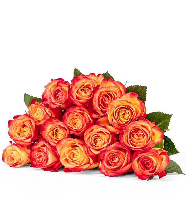 15 Rosen gelborange 40cm