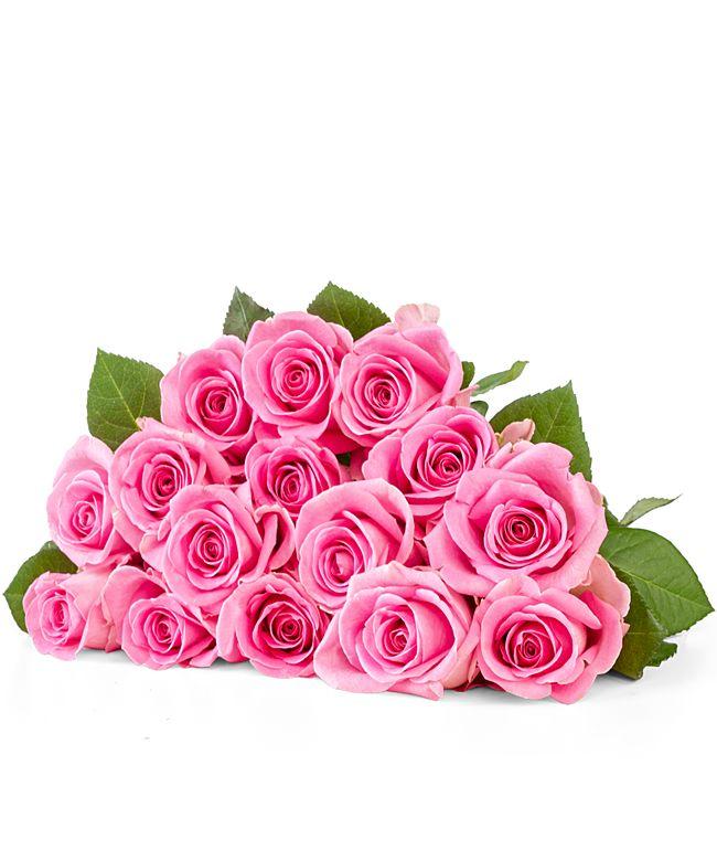 15 Rosen rosa 40cm