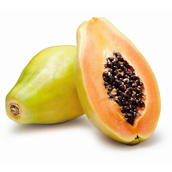 Papaya Formosa XXL