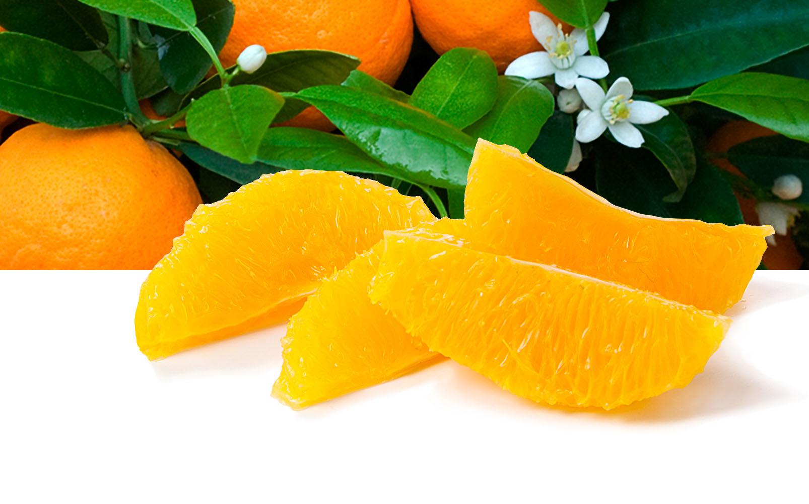 Orangen Filets