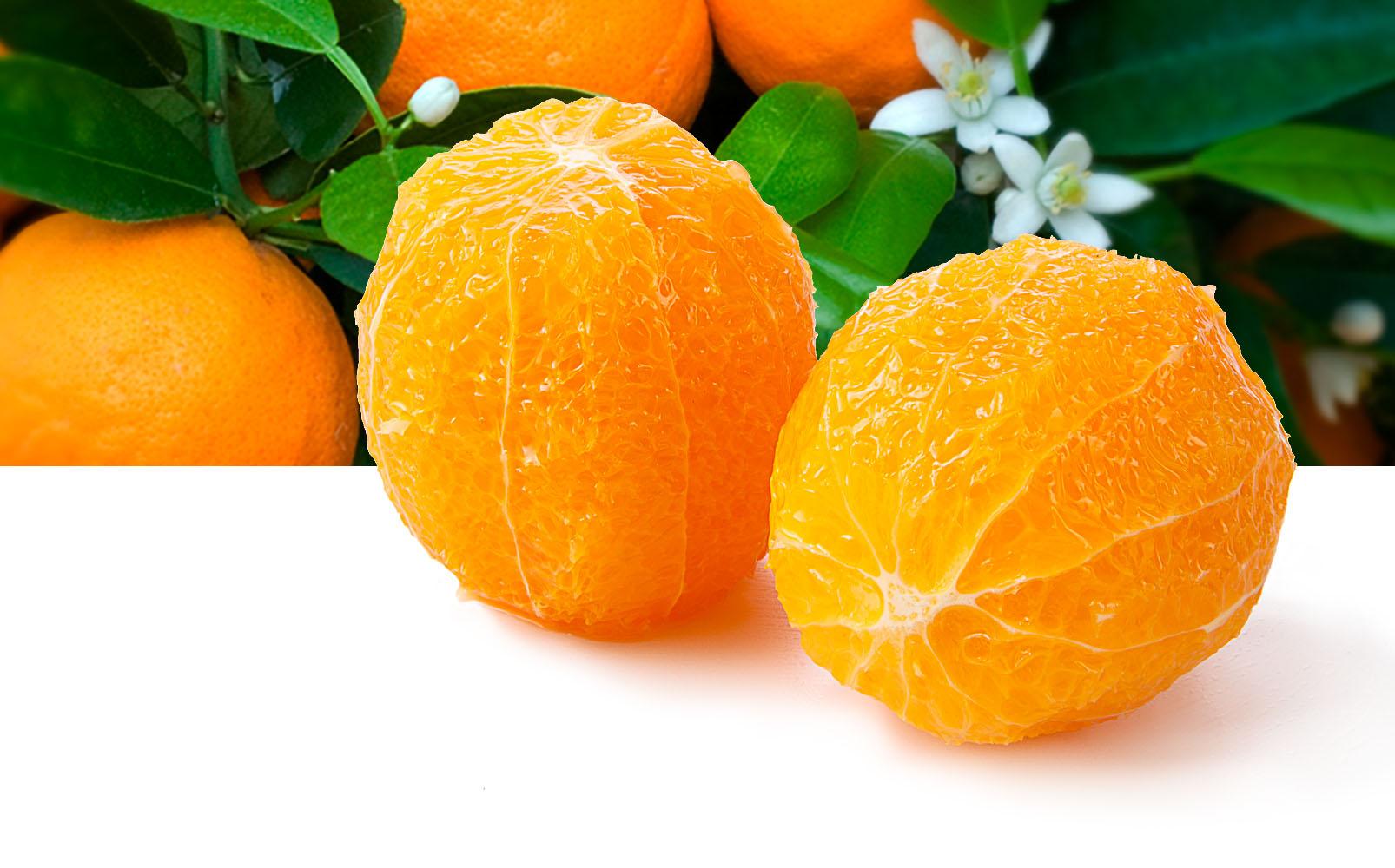 Orangen ganz, geschält