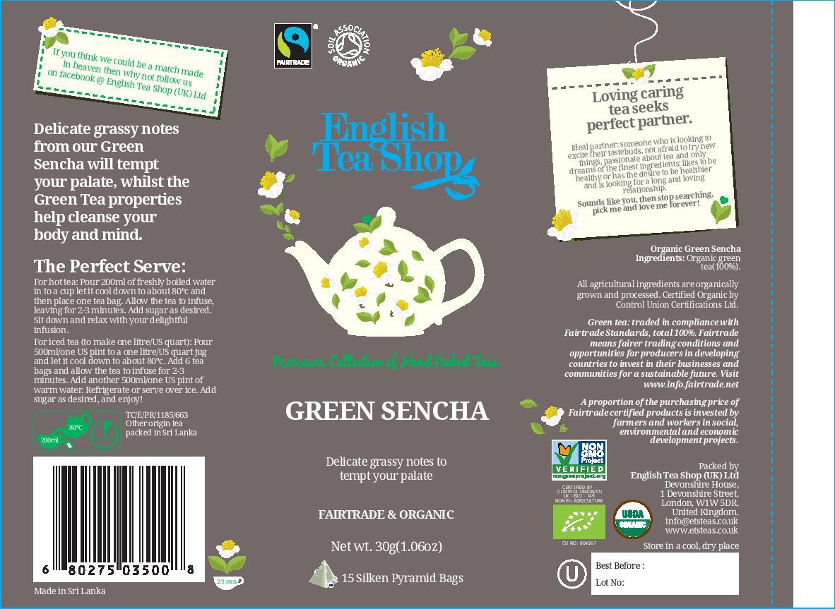 Green Sencha - 15 pyramid tin