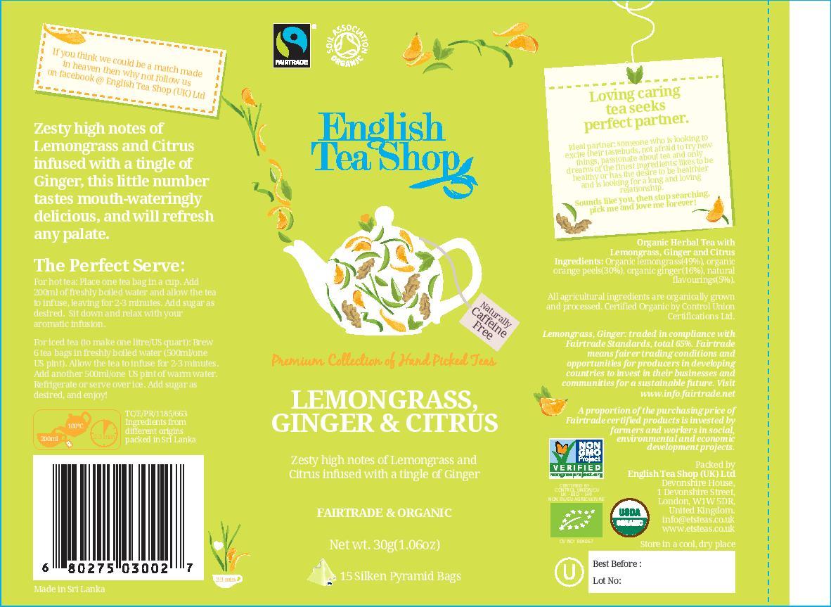 Lemongrass Ginger & Citrus - 15 pyramid tin