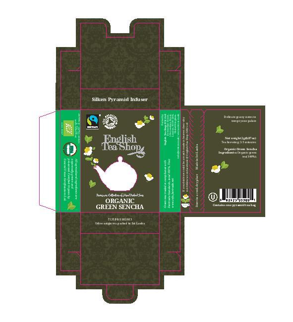 Green Sencha Individual Infuser