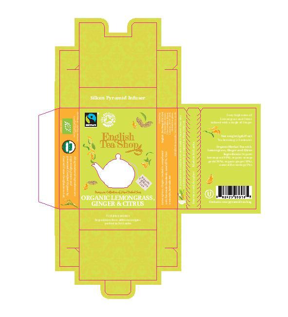 Lemongrass Ginger & Citrus Individual Infuser
