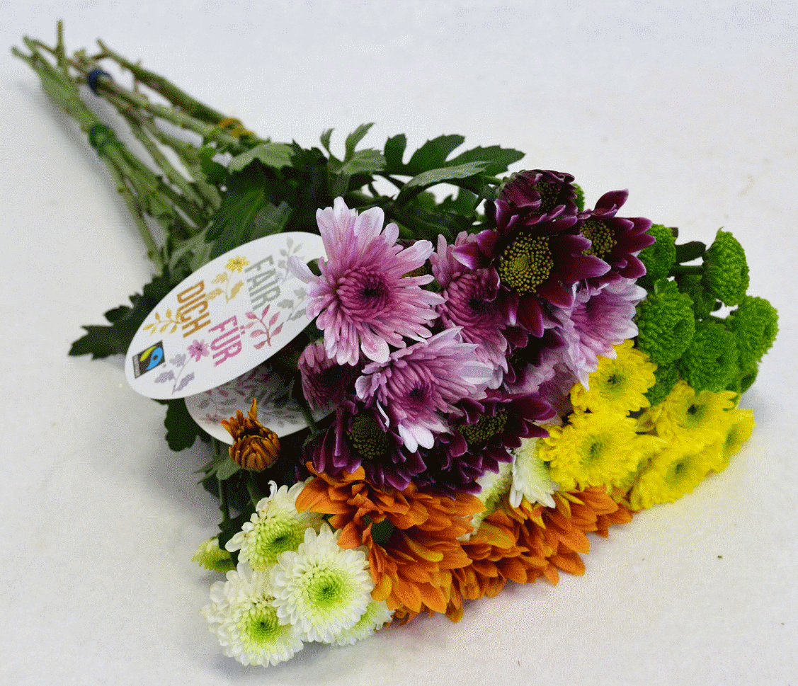 Chrysanthemen 50 cm, 4-Bund