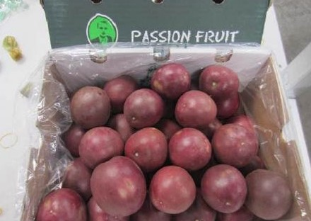 Passionsfrucht